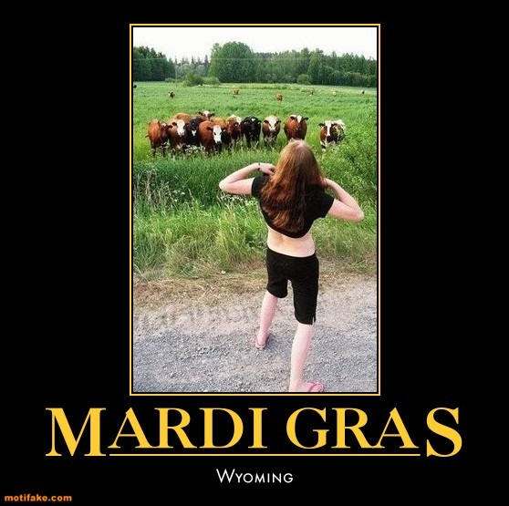 mardi-gras-wyoming-cows-humor-demotivational-posters-1329532403